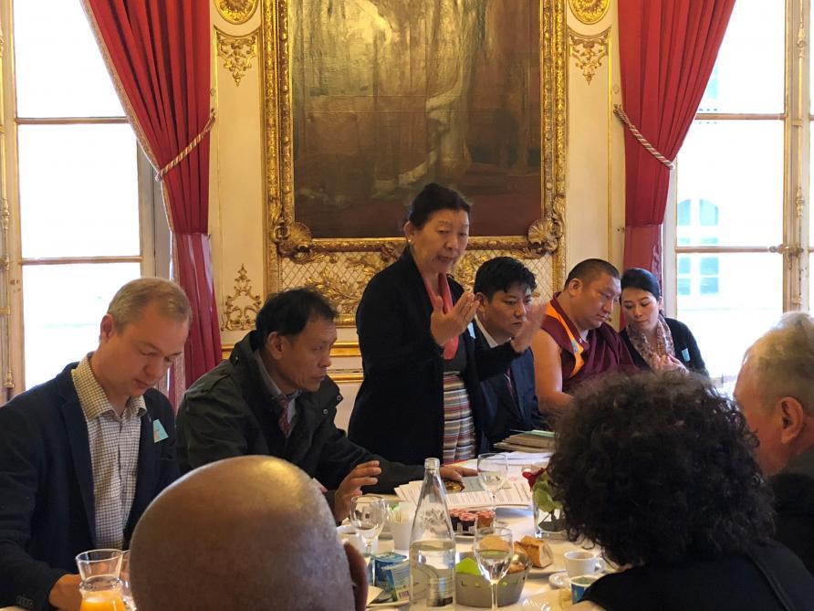 Dolma Tsering Teykhang (debout) a notamment participé avec la délégation tibétaine (dont Ngawang Tharpa à sa gauche) à une réunion au Sénat français.