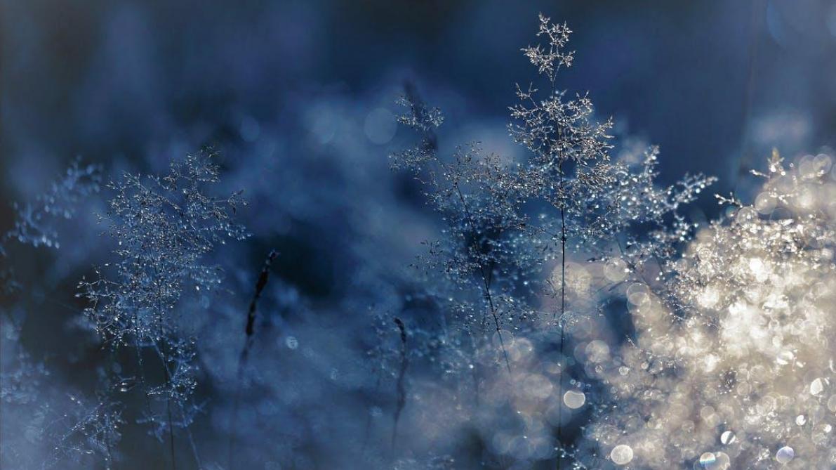 Equinoxe: pourquoi le printemps débute le 20 mars et plus le 21