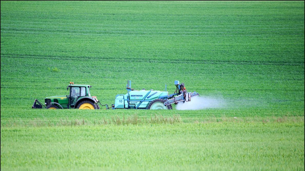 «Tous les enfants belges sont exposés aux pesticides», prévient une étude de Test-Achats