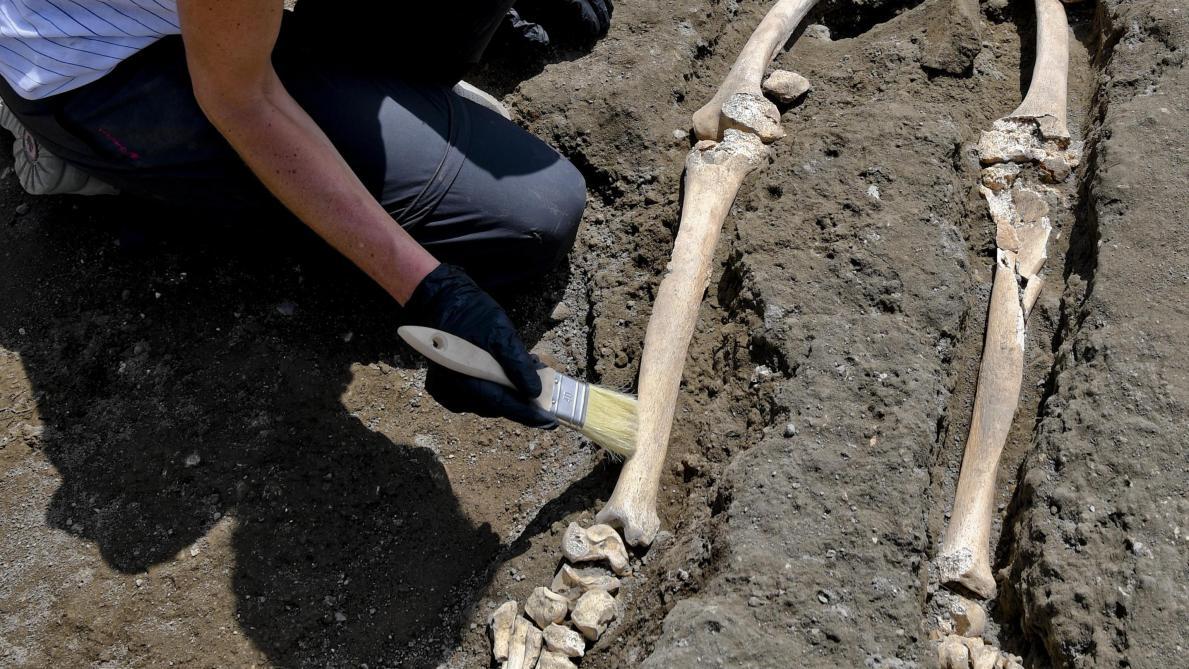 Pompéi: une nouvelle victime de l'éruption du Vésuve découverte par les archéologues