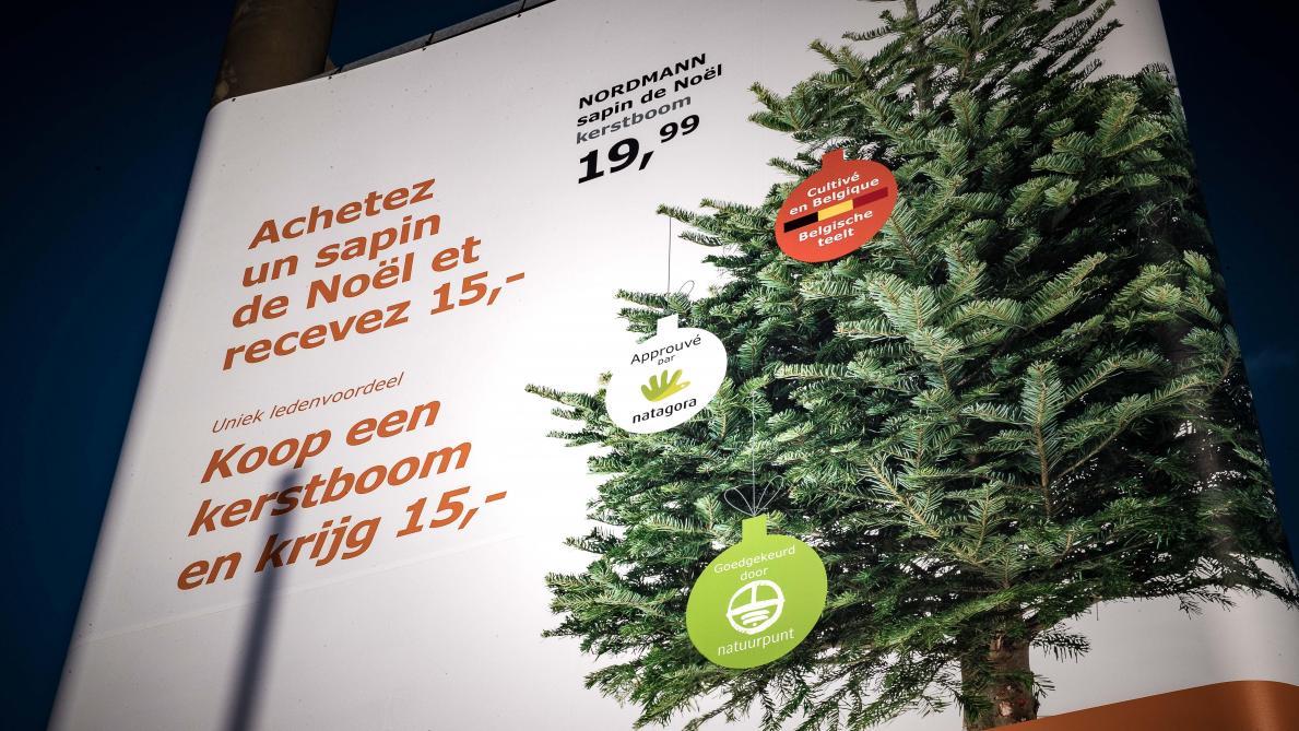 Sapins de Noël: Ikea en flagrant délit de greenwashing   Le Soir Plus