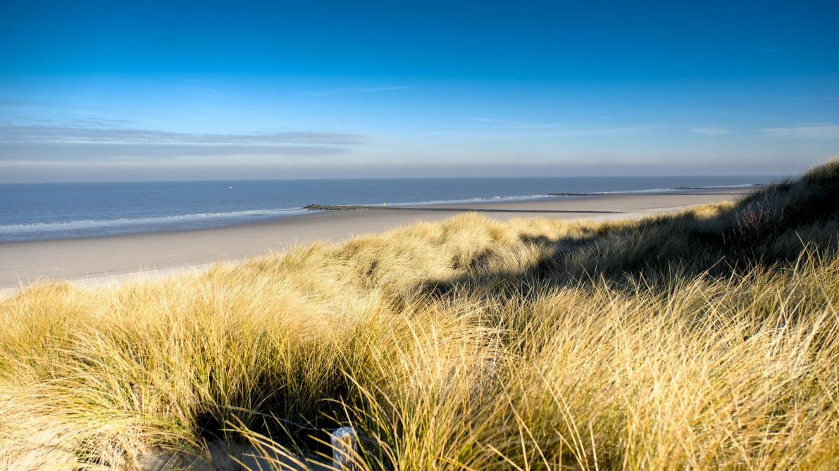 Des plages des Pays-Bas souillés — Conteneurs perdus