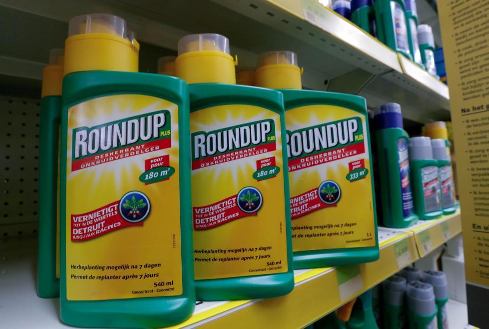 : Procès Monsanto: le Roundup a contribué au cancer du plaignant, estime un jury américain