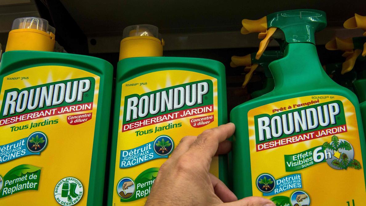 Nouvelle défaite judiciaire pour Monsanto — Roundup
