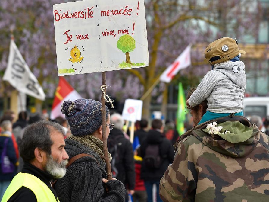 Emmanuel Macron annonce une série de mesures pour la biodiversité