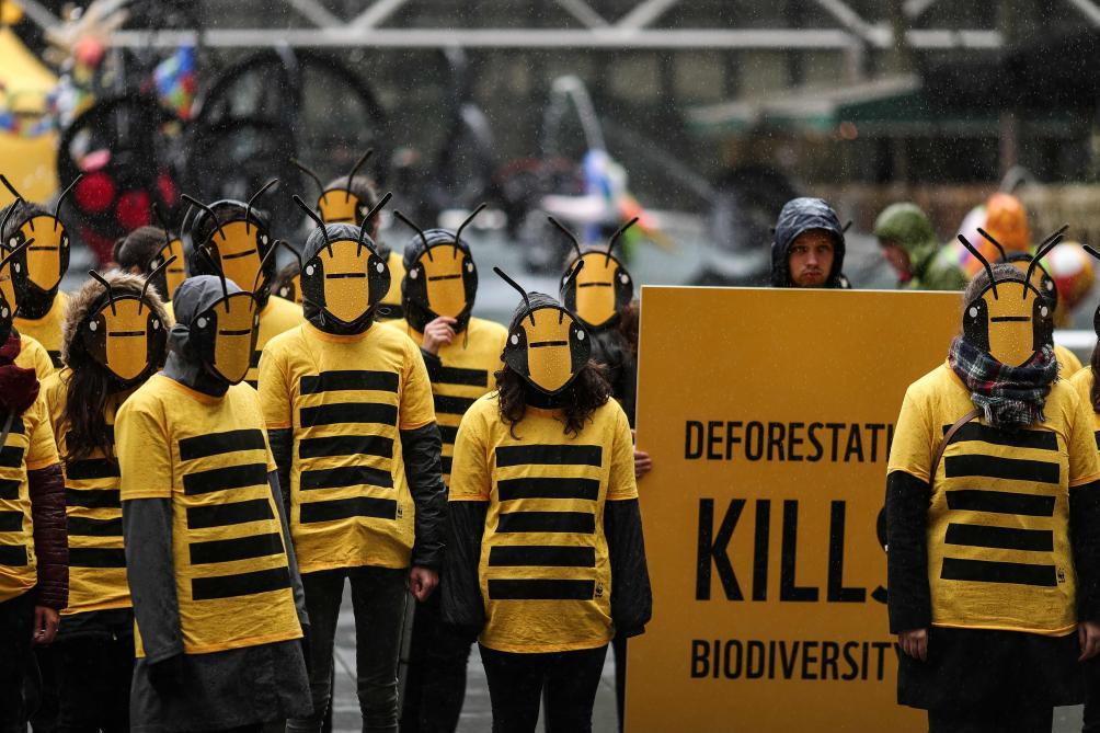 Un million d'espèces en voie d'extinction — Biodiversité