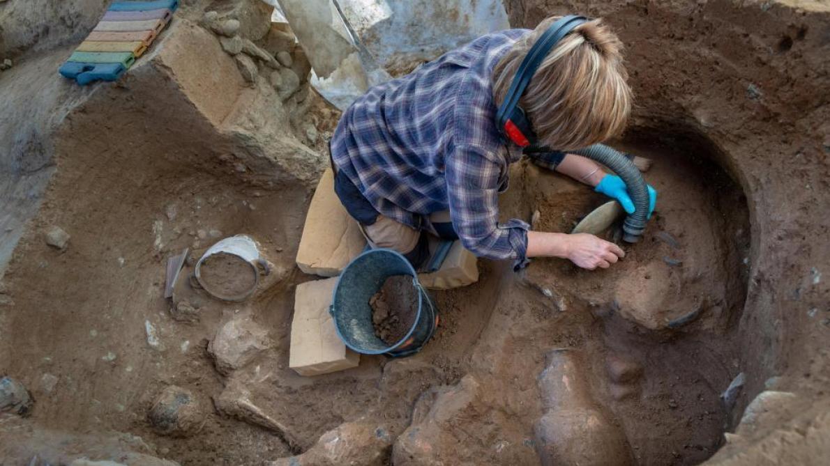 Une gravure inédite pour son âge découverte à Angoulême — Archéologie