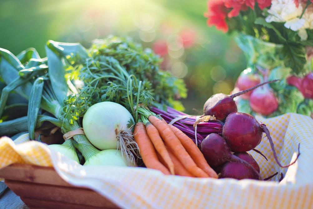 Pour diminuer le réchauffement climatique, le Giec invite à se tourner vers un régime alimentaire végétale