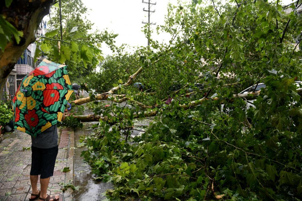 Le typhon Lekima sème la mort en Chine: 13 morts, 16 disparus