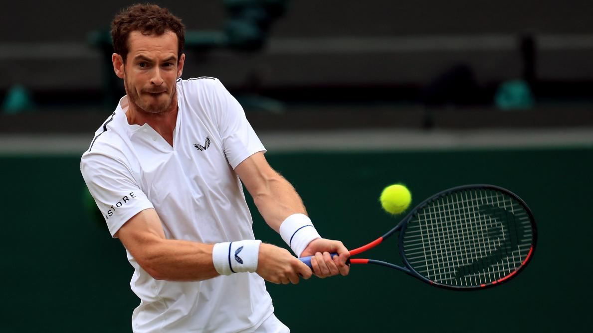 À Anvers, Andy Murray revient défier David Goffin sur ses terres