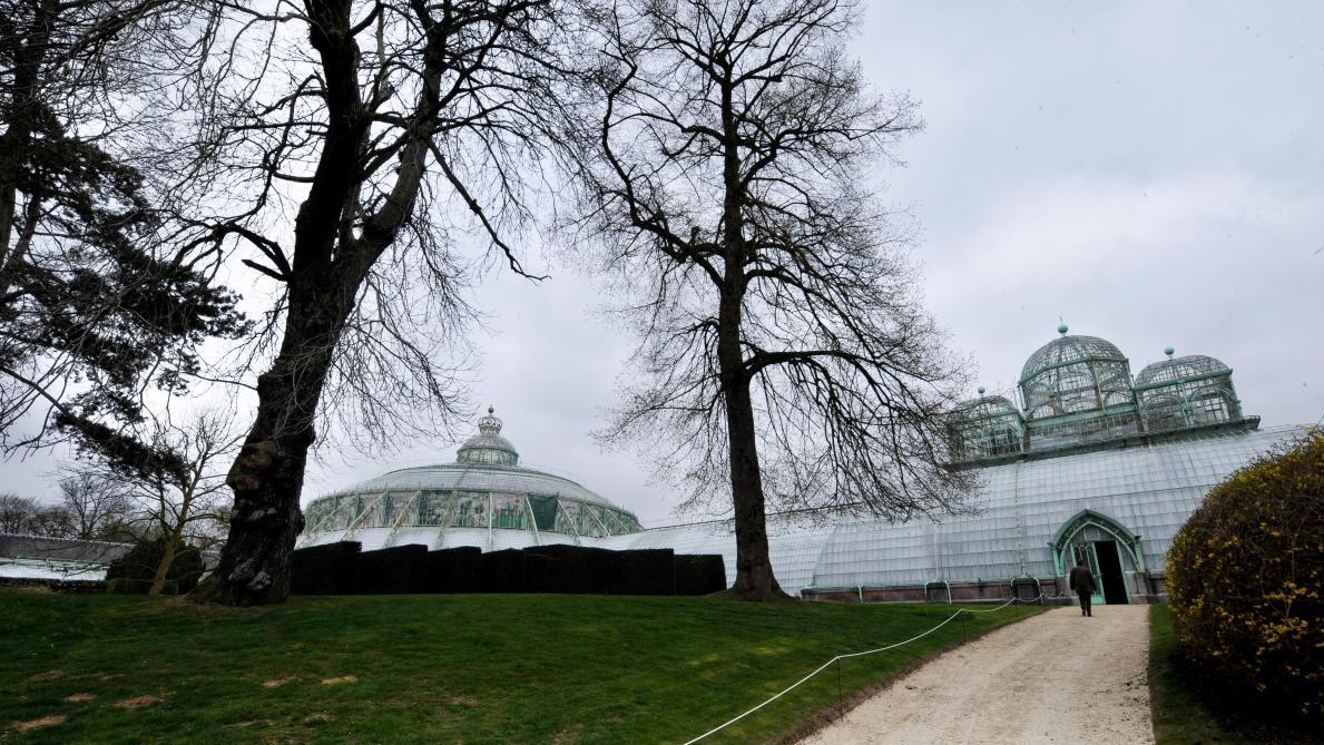 Ecolo-Groen retente l'ouverture au public du parc royal de Laeken