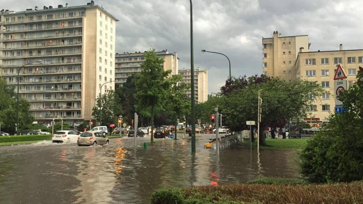 Inondations, voitures détériorées, arbres déracinés...: le bilan des averses
