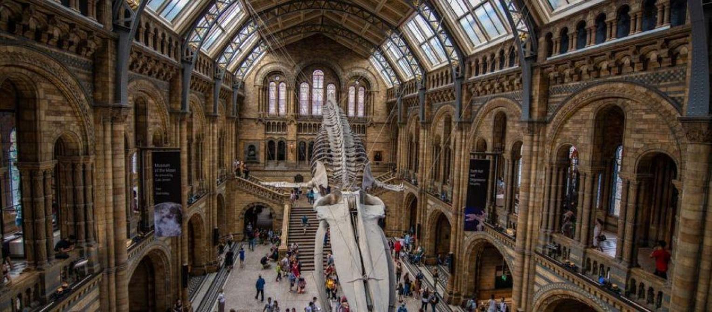 Plus de 18 musées bruxellois ouvrent leurs portes la nuit