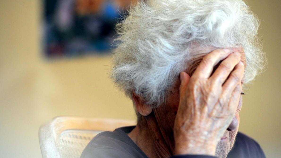 Alzheimer: de l'algue au secours des patients