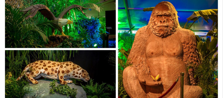Un festival de sculptures en chocolat ouvre ce week-end à Spa