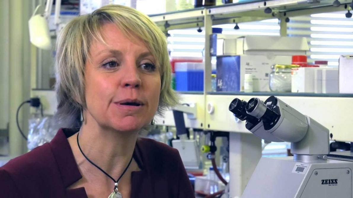 La professeure Sophie Lucas récompensée pour son «tueur de tumeurs»