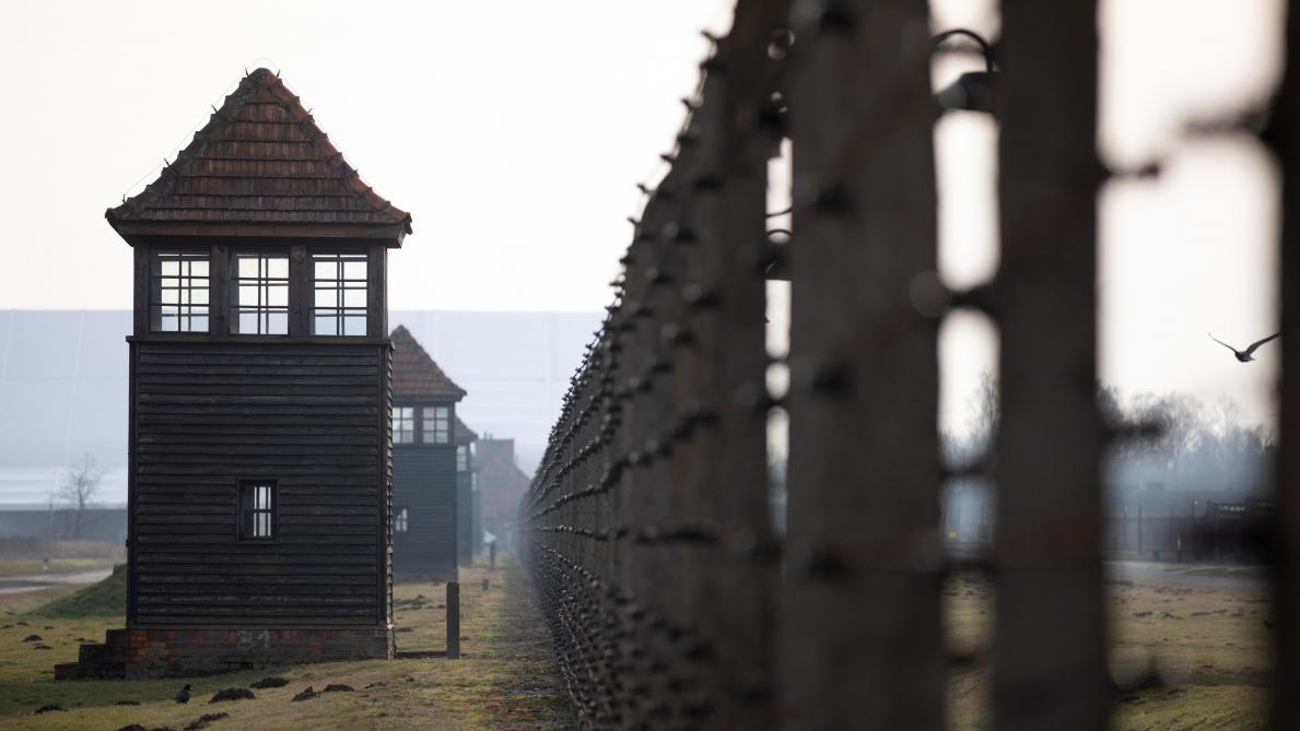 Combien de Pologne à Auschwitz?