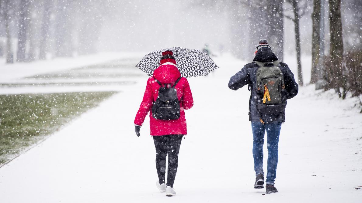 De la neige et des rafales de vent: les prévisions météo région par région