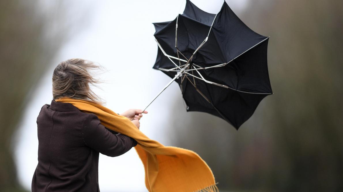 Des vents violents attendus ce samedi: les prévisions région par région