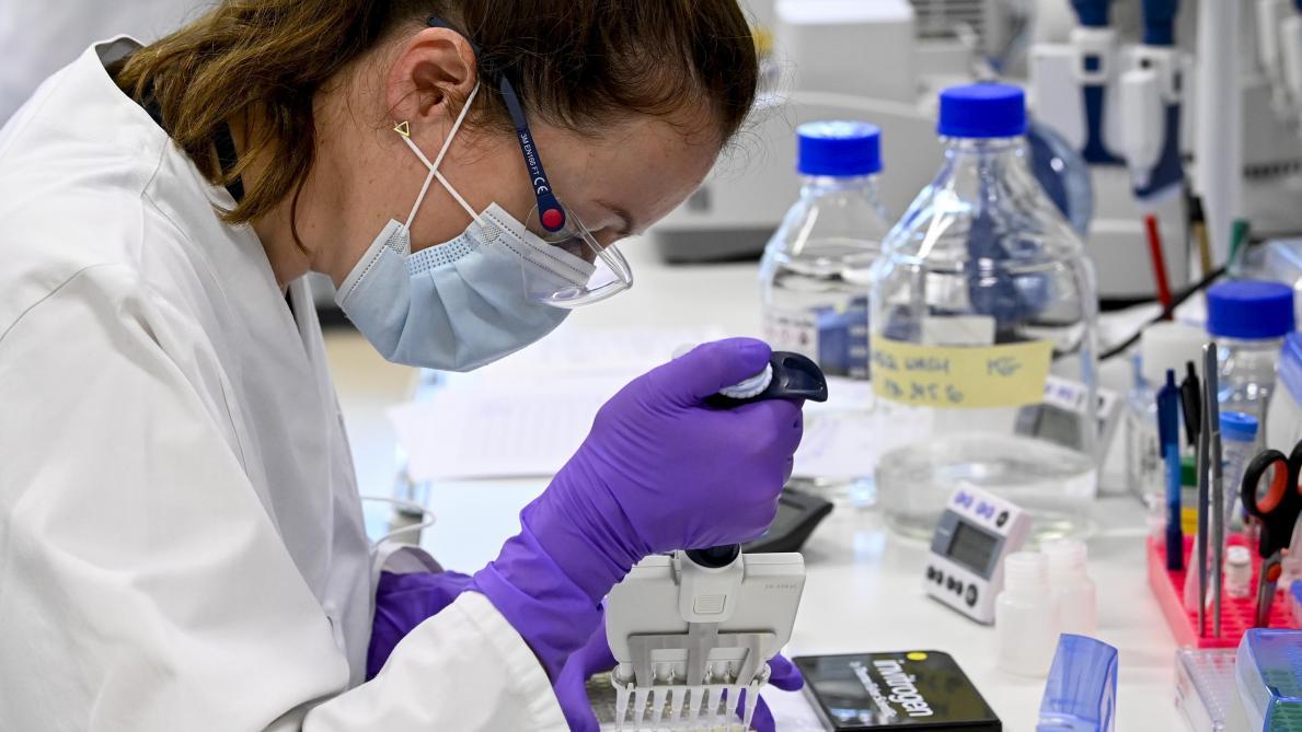 Eli Lilly interrompt l'essai d'un traitement aux anticorps — Coronavirus
