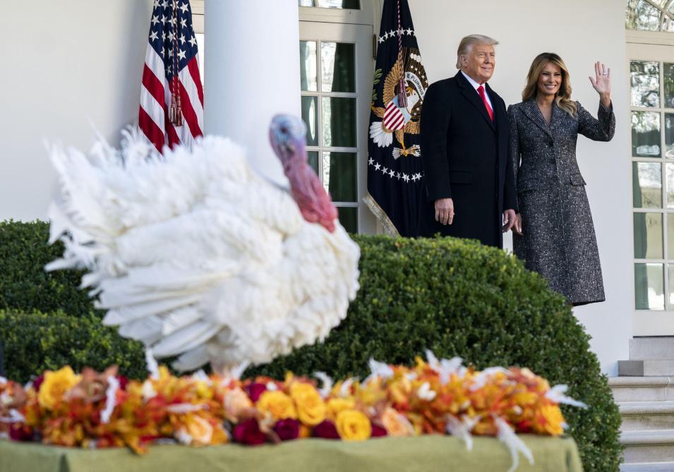 Donald Trump gracie la traditionnelle dinde de Thanksgiving (photos)