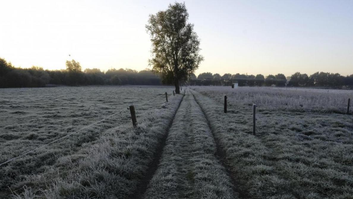 Météo: la neige pourrait faire son retour durant la nuit - Le Soir