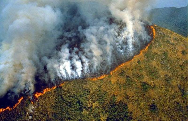 June 1989, Brazil: The forest burns. The Amazon is the largest rainforest in the world and is home to 15% of the world's known land-based plant species, and nearly 10% of the world's mammals. It has as many as 300 species of tree in a single hectare. Photograph: Sipa Press/Rex Features